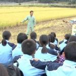 実りの秋。中学生が稲刈りに挑戦!
