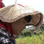 鵜戸神宮で抜穂祭
