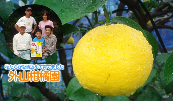 生産者 外山柑橘園