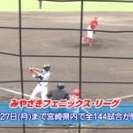 みやざきフェニックス・リーグ2014開幕中