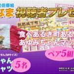 飫肥城下町 視聴者プレゼント!(終了)