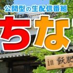 【8/1告知】生配信番組 にちなま
