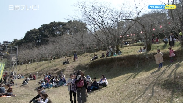 サクラの名所 竹香園の桜まつりが復活