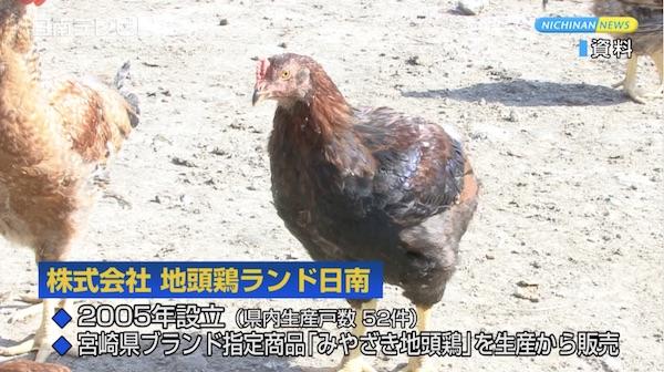 地頭鶏ランド日南 創立10周年