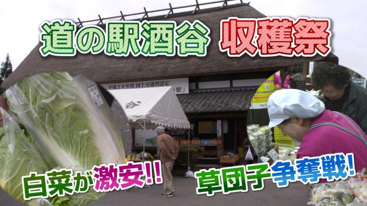「道の駅酒谷」収穫祭