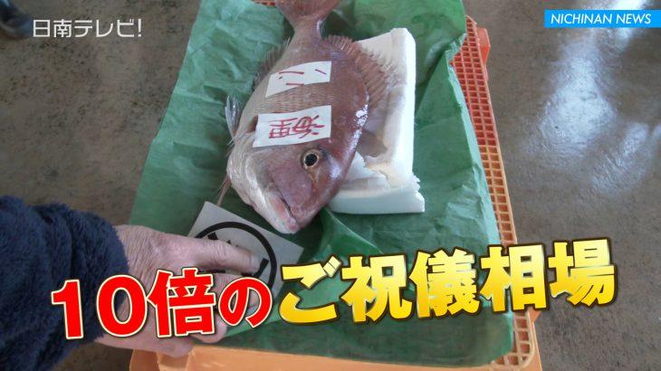 日南市漁協 初競り
