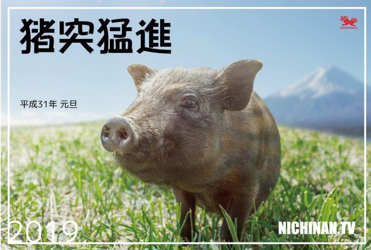 猪突猛進 2019年