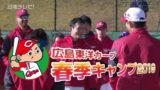 広島カープ春季キャンプ 2019