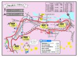 つわぶきハーフマラソン大会in日南・17日に交通規制が実施