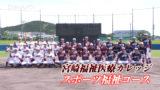 宮崎福祉医療カレッジ野球部(2020)