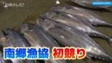 南郷漁協の初競り 年末と比べ2〜3割高