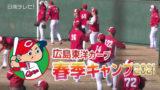 広島カープ 日南春季キャンプは無観客でスタート
