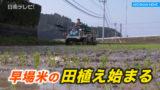早場米の田植え始まる