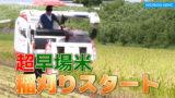 早場米の稲刈りスタート