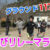 陸上クラブの縄跳びリレーマラソン